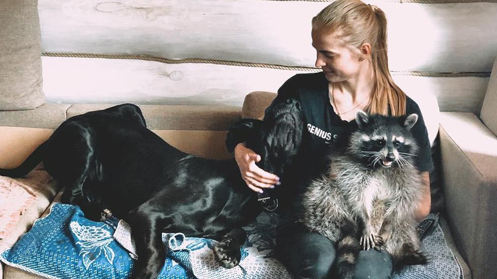 «Я себе настолько связала руки!»: жительница Брянска о жизни в квартире с енотом
