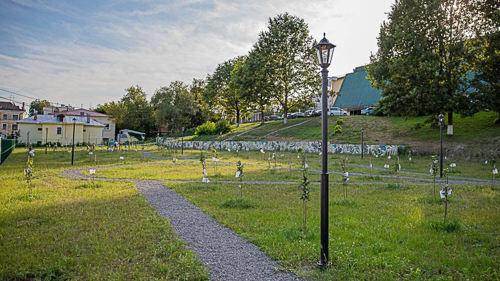 Что происходит в Саду Победы через три месяца после его открытия