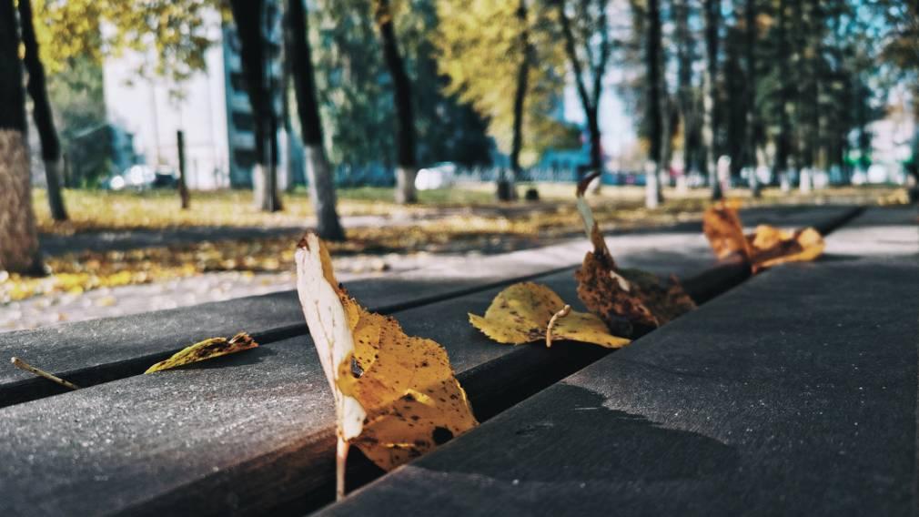 ТОП-5 мест в Брянске для осенней фотосессии