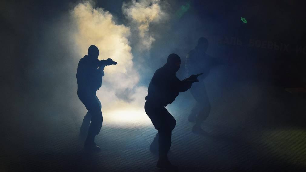 В Брянске прошёл Всероссийский фестиваль боевых искусств