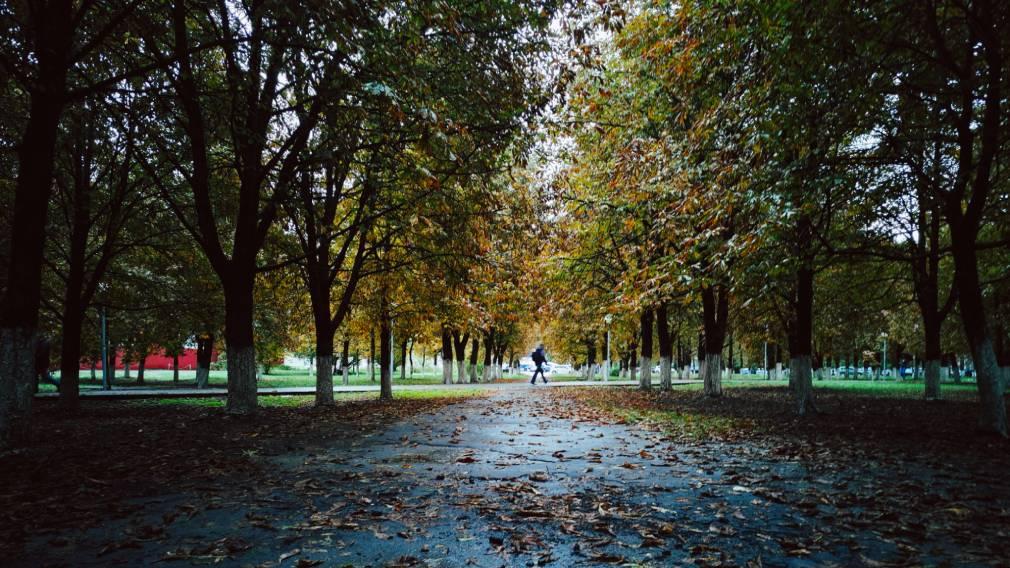Встретимся у фонтана: в Брянске открыли отремонтированный Пролетарский сквер